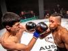 Eindrücke Austrian Fight Night 2