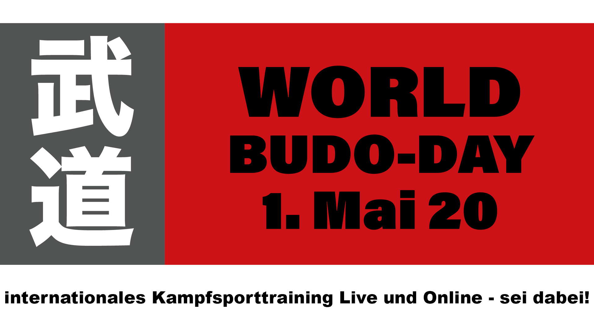 international world budo day, online kampfsporttraining, live und online, mit internationalen spitzensportlern
