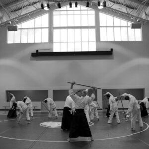 Aikido, die elegante Kunst