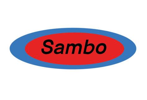 Sambo, russisches MMA